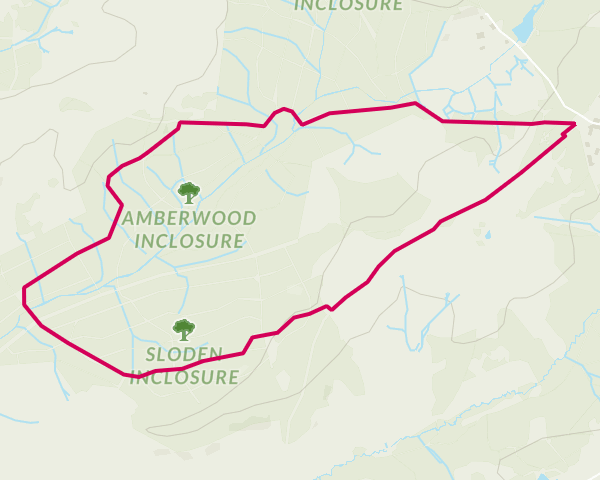 Ordnance Survey walk of the week: Fritham, New Forest...
